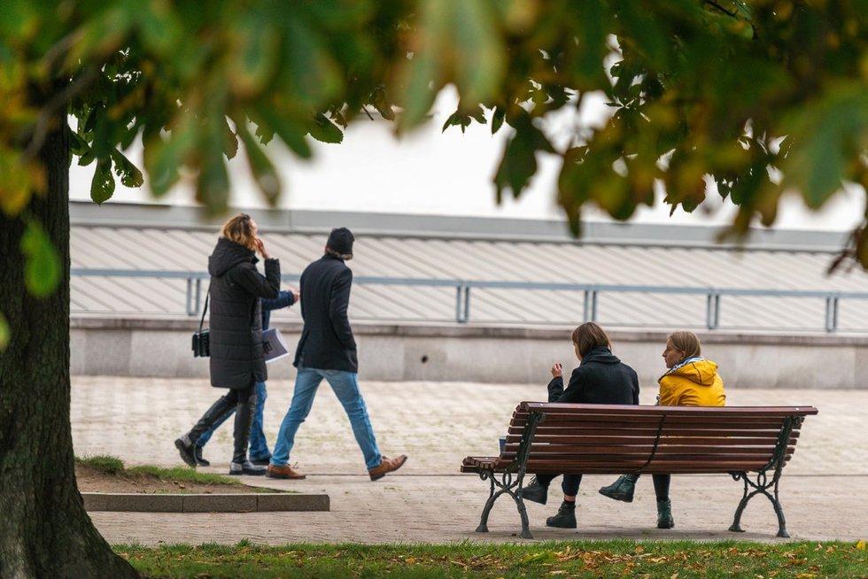 Ruduo sostinėje (nuotr. Fotodiena/Justino Auškelio)