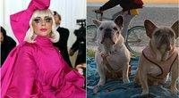 Lady Gaga ir jos šunys (nuotr. SCANPIX) tv3.lt fotomontažas