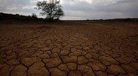 Perspėjimas apie netolimą ateitį: trečdalis žmonijos gali laukti gyvenimas Sacharos sąlygomis (nuotr. SCANPIX)