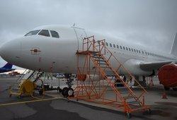 Vilniuje nusileido nusikaltėlių lėktuvas: iš Londono grąžinta 18 žmonių