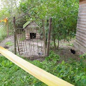 Sarginis šuo mirtinai sudraskė vyrą: sudarkytą kūną rado kaimynė