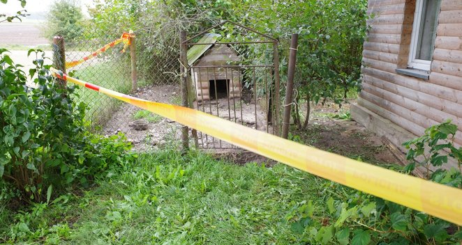 Šalčininkų rajone šuo mirtinai sudraskė vyriškį