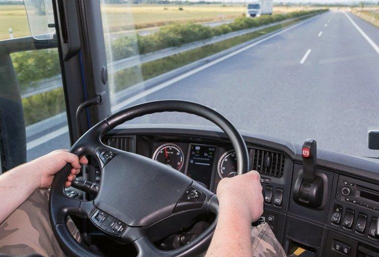 Vilkiko vairuotojas (nuotr. Shutterstock.com)