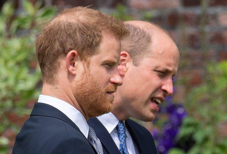 Williamas ir Harry  (nuotr. Vida Press)