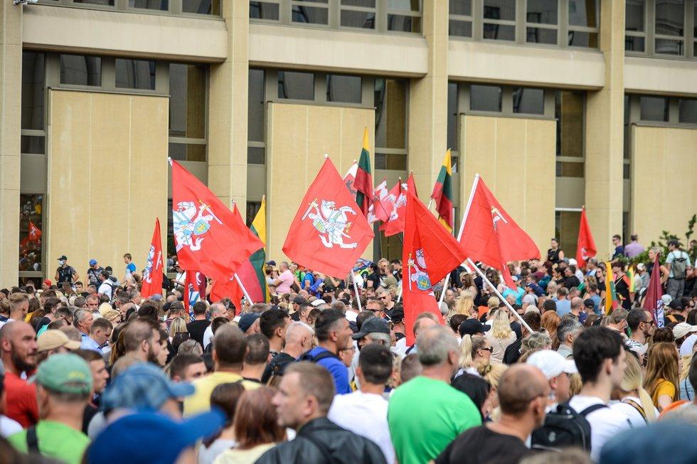Prie Seimo vyksta mitingas prieš COVID-19 suvaldyti skirtus ribojimus