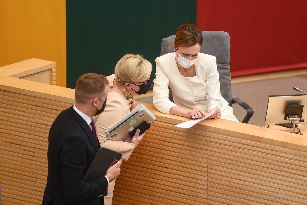 Politinio sezono startas: Seime prasideda rudens sesija