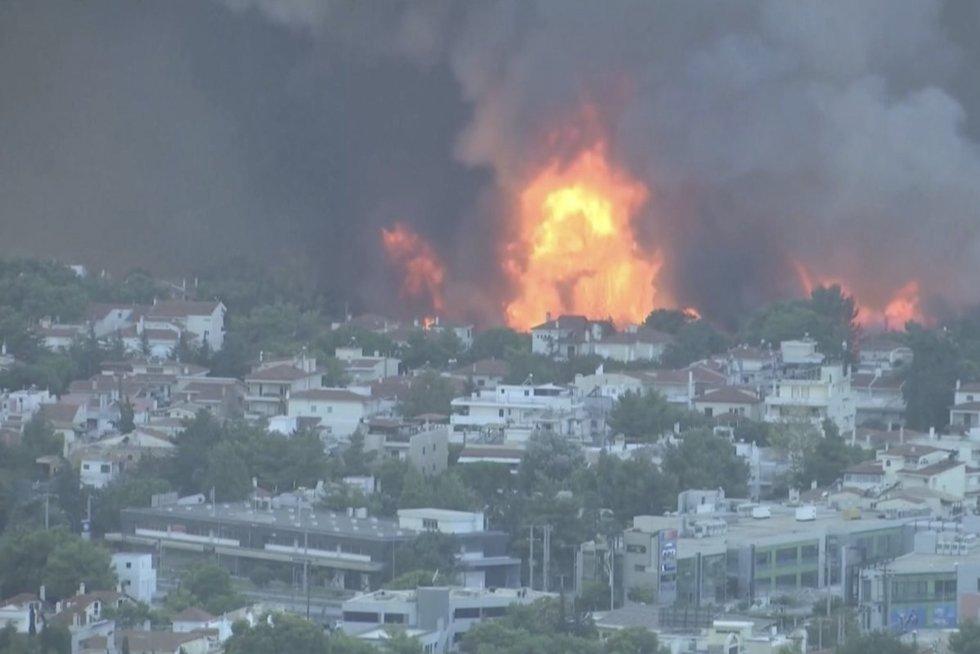 Atėnus svilina ne tik alinantis karštis, bet ir siaubia milžiniškas gaisras – nuo jo bėga tūkstančiai (nuotr. stop kadras)
