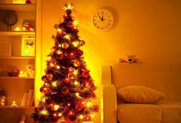 Kalėdų eglutė (nuotr. 123rf.com)