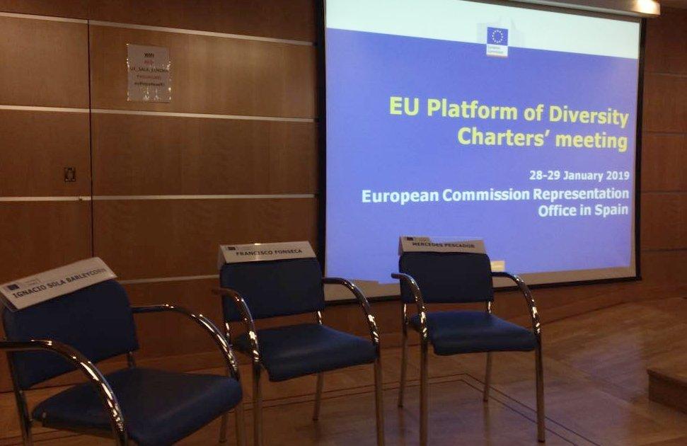 ES Įvairovės chartijų platformos susitikimas vyko Madride. (nuotr. asm. archyvo)