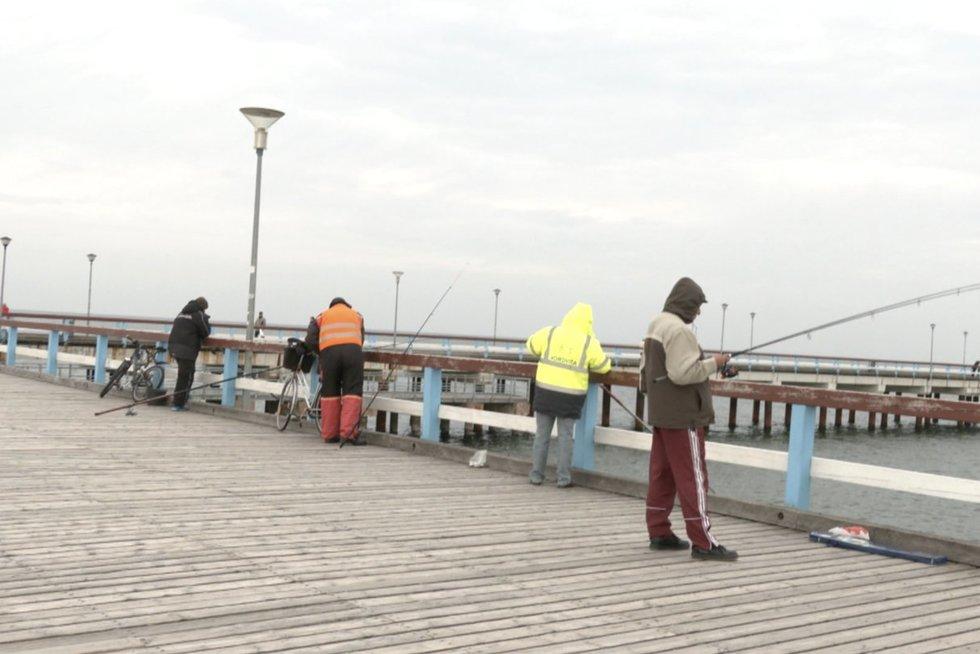 """Meškeriotojai Baltijos jūroje nebepagauna plekšnių: """"meškeriotojai Baltijos jūroje nebepagauna plekšnių"""" (nuotr. stop kadras)"""