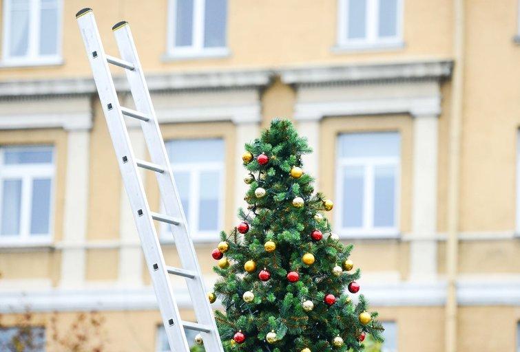 Neįpusėjus spaliui Rotušės aikštėje iškilo Kalėdų eglė ir visas miestelis (nuotr. Fotodiena/Justino Auškelio)
