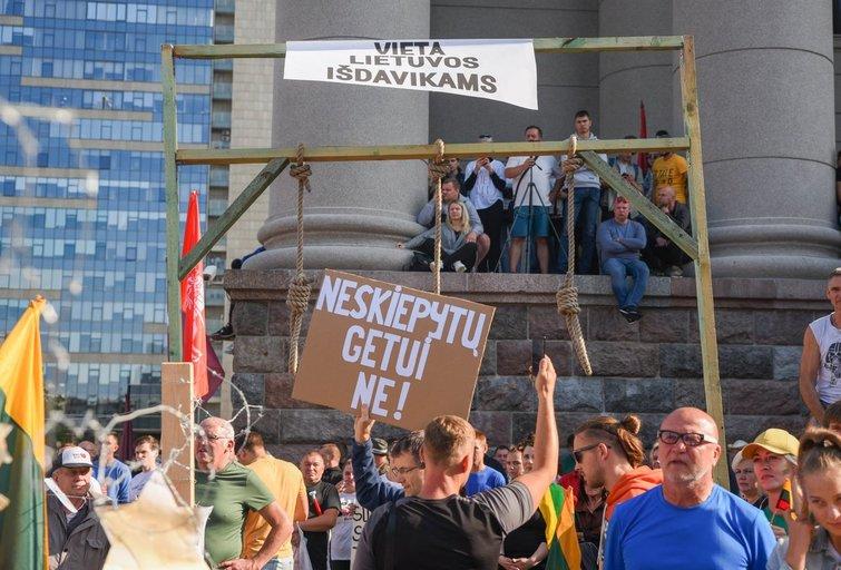 Prie Seimo vyksta mitingas prieš COVID-19 suvaldyti skirtus ribojimus (nuotr. Fotodiena/Justino Auškelio)