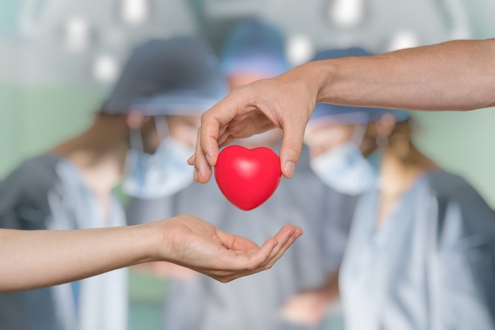 Organų donorystė