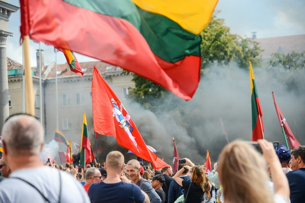 Mitingas prie Seimo (nuotr. K. Polubinska/ fotodiena.lt)