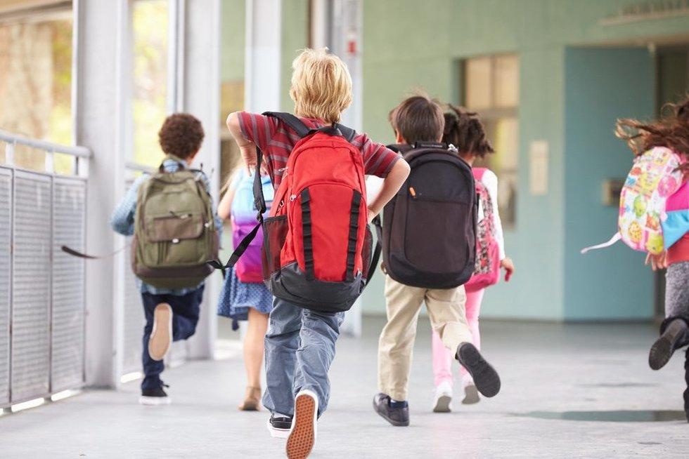 Grįžimas į mokyklą (nuotr. Shutterstock.com)