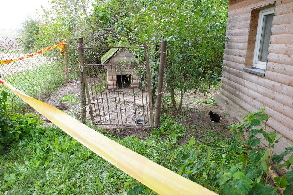 Šalčininkų rajone šuo mirtinai sudraskė vyriškį (nuotr. Broniaus Jablonsko)