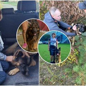 Dingęs jonavietės šuo parodė tikrąjį lietuvių veidą: verti didžiausios padėkos