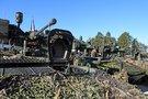 NATO sąjungininkų bendradarbiavimas Baltijos regione (aut. Thorgils Jonsson) (nuotr. Organizatorių)