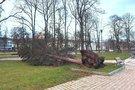 Trečiadienį siautusio vėjo padariniai - išvirtusi Pilių parko eglė (nuotr. facebook.com)