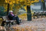 Seimas užsimojo prieš Kalėdas visiems pensininkams išdalinti po 100 eurų