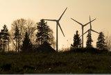 Pasikinkiusios vėją: Europos šalys, kur vėjas pagamina daugiausia reikalingos elektros