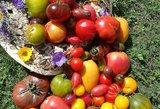 Rinkitės šios spalvos daržoves – puiki priešvėžinė priemonė