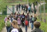 Liūdna statistika: mokyklose mažėja ne tik mokytojų, bet ir moksleivių