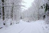 Kiek žiemų per pastarąjį dešimtmetį atnešė sniego?