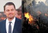 Katastrofa sujaudino DiCaprio širdį: paaukojo 5 mln. dolerių