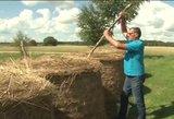 Lietuviai itin išradingi: rado paprastą, bet neregėta būdą papuošti sodybą