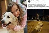 Monika Šalčiūtė prašo pagalbos: rado sužeistą auksaspalvį retriverį