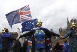 """Britų diplomatijos vadovo kirtis dėl """"Brexit"""": tai kvailas planas"""
