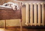 Bus šilčiau: daugiabučiuose įjungiamas šildymas