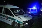 Utenos rajone policija pateko į avariją: kelią pastojo stirna
