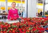Lietuviai šluoja pirmąsias braškes – perskaičiavus kainas į litus būtų silpna