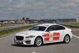 """""""Jaguar"""" žvaigždės - """"ENEOS 1006 km lenktynių"""" trasoje"""