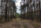 Žalimas: įsigaliojus nutarimui dėl Miškų įstatymo pataisų, gali sutrikti miškų valdymas ir tvarkymas
