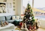 Lietuvės namai primena kalėdinį atviruką: vaizdas privers aiktelėti