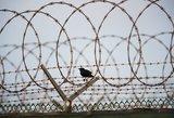 Po tarnybų didinamuoju stiklu – Kalėjimų departamentas