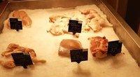 Užfiksavo vaizdą parduotuvėje – kenkėjai puolė mėsą