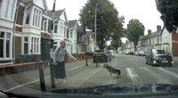 Tokio kuriozo vairuotojas dar nebuvo matęs: moteriai teko raudonuoti iš gėdos (nuotr. stop kadras)
