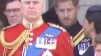 Plinta įrašas: princas Harry protokolo Markle mokė viešo renginio metu