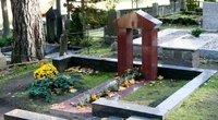 Kapinės