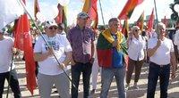 Šeimų mitinge pasirodė ir pora su LGBT vėliava: iškart sulaukė neapykantos (nuotr. stop kadras)