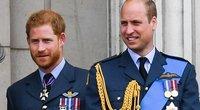 Princas Harry ir princas Williamas (nuotr. SCANPIX)