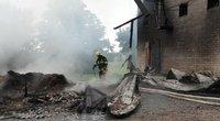 Vilkaviškio rajone žaibas smogė į grūdų sandėlį (nuotr. Raimundo Maslausko)