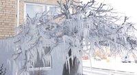 Žiema stebina vaizdais: nuo sustingusių užtvankų iki ledo skulptūrų (nuotr. stop kadras)