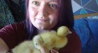 Iš parduotuvėje pirktų anties kiaušinių išsirito trys ančiukai – sako, kad toks atvejis neįtikėtinai retas. (nuotr. facebook.com)