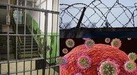 Pavojingo viruso protrūkis įkalinimo įstaigoje (nuotr. tv3.lt)