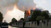Ugnis negailestingai naikina Paryžiaus Dievo Motinos katedrą (nuotr. SCANPIX)